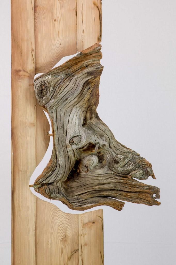 """Forma spontanea di Marco Nones 682x1024 C'è un'arte """"nuova"""" al Centro Arte Contemporanea di Cavalese"""