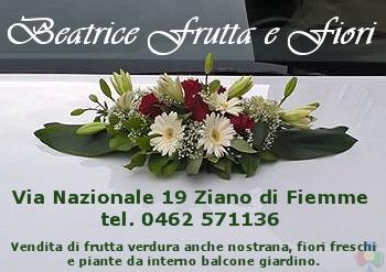 Beatrice Frutta e Fiori Ziano